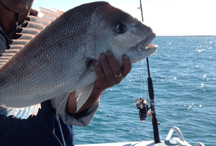 Fishing Charters Shark Bay