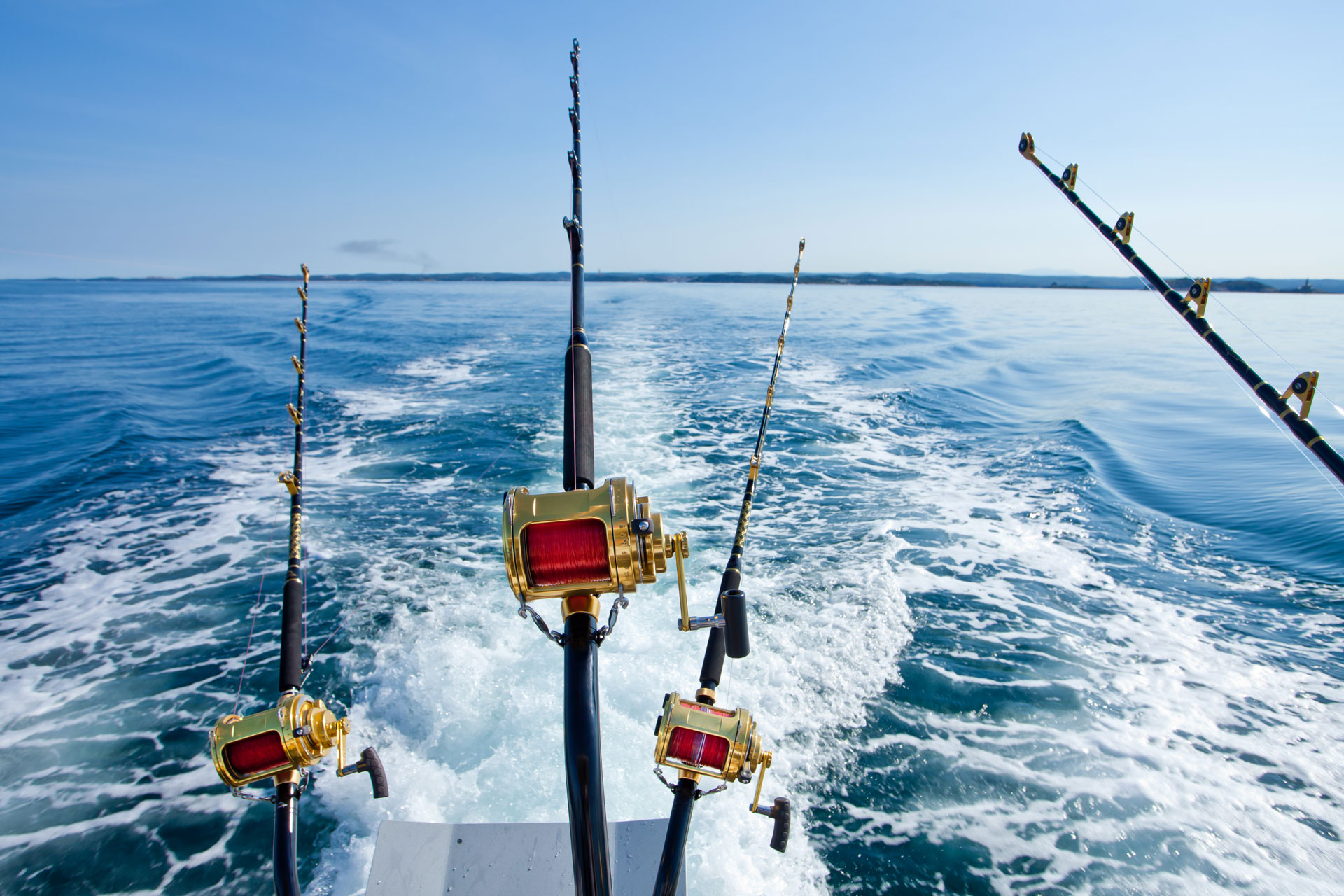 Fishing charter excursions and cruises are lovely and unique gifts