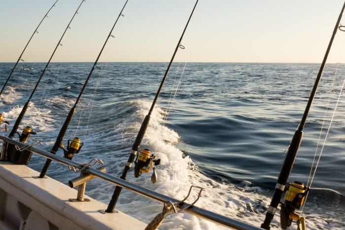 We offer several types of cruises and fishing charters designed to thrill all members of your family